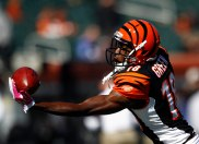 NFL: Buffalo Bills at Cincinnati Bengals